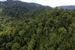 Rainforest in Borneo -- sabah_aerial_0274
