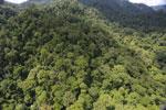 Rainforest in Borneo -- sabah_aerial_0283