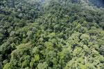 Rainforest in Borneo -- sabah_aerial_0289