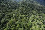Rainforest in Borneo -- sabah_aerial_0290
