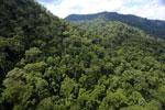 Rainforest in Borneo -- sabah_aerial_0292