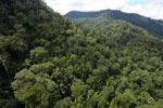 Rainforest in Borneo -- sabah_aerial_0293