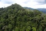 Rainforest in Borneo -- sabah_aerial_0301
