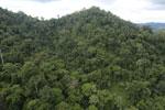 Rainforest in Borneo -- sabah_aerial_0309