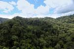 Rainforest in Borneo -- sabah_aerial_0314