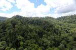 Rainforest in Borneo -- sabah_aerial_0315