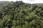 Rainforest in Borneo -- sabah_aerial_0316