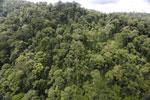Rainforest in Borneo -- sabah_aerial_0318