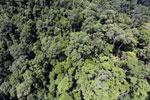 Rainforest in Borneo -- sabah_aerial_0327