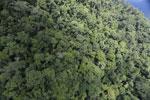 Rainforest in Borneo -- sabah_aerial_0332