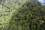 Rainforest in Borneo -- sabah_aerial_0347