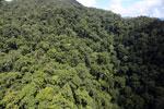 Rainforest in Borneo -- sabah_aerial_0349