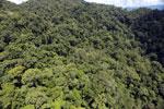 Rainforest in Borneo -- sabah_aerial_0351