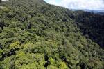 Rainforest in Borneo -- sabah_aerial_0353