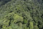 Rainforest in Borneo -- sabah_aerial_0356