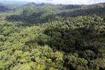 Rainforest in Borneo -- sabah_aerial_0363