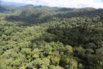 Rainforest in Borneo -- sabah_aerial_0366