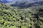 Rainforest in Borneo -- sabah_aerial_0367