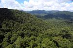 Rainforest in Borneo -- sabah_aerial_0384
