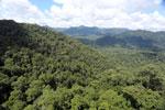 Rainforest in Borneo -- sabah_aerial_0385