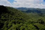 Rainforest in Borneo -- sabah_aerial_0386