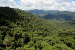 Rainforest in Borneo -- sabah_aerial_0387