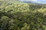 Rainforest in Borneo -- sabah_aerial_0406
