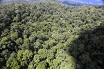 Rainforest in Borneo -- sabah_aerial_0408