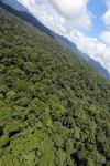 Rainforest in Borneo -- sabah_aerial_0409