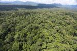 Rainforest in Borneo -- sabah_aerial_0423