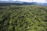 Rainforest in Borneo -- sabah_aerial_0424