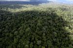 Rainforest in Borneo -- sabah_aerial_0426