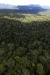 Rainforest in Borneo -- sabah_aerial_0431