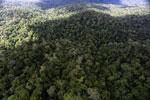Rainforest in Borneo -- sabah_aerial_0439