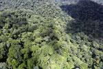 Rainforest in Borneo -- sabah_aerial_0444
