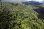 Rainforest in Borneo -- sabah_aerial_0446