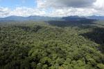 Rainforest in Borneo -- sabah_aerial_0447