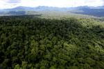 Rainforest in Borneo -- sabah_aerial_0448