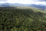Rainforest in Borneo -- sabah_aerial_0450