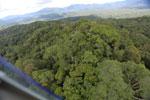 Rainforest in Borneo -- sabah_aerial_0453