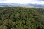 Rainforest in Borneo -- sabah_aerial_0455