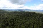 Rainforest in Borneo -- sabah_aerial_0460
