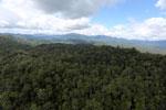 Rainforest in Borneo -- sabah_aerial_0461