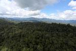 Rainforest in Borneo -- sabah_aerial_0462