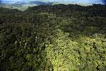 Rainforest in Borneo -- sabah_aerial_0466