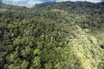 Rainforest in Borneo -- sabah_aerial_0469