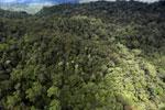 Rainforest in Borneo -- sabah_aerial_0470