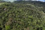 Rainforest in Borneo -- sabah_aerial_0473