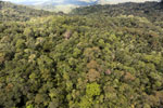 Rainforest in Borneo -- sabah_aerial_0474