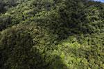 Rainforest in Borneo -- sabah_aerial_0478